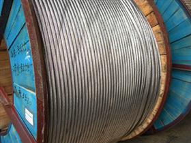 钢芯铝绞线 (1*50)