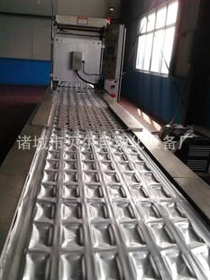 热销供应 热成型真空包装机 全自动热成型真空包装机