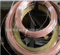 无锡厂家直销QSn4-0.3锡磷青铜丝C5100磷铜线 QSn6.5-0.1磷铜丝