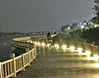 滨湖公园环湖绿道连夜铺设路灯电缆