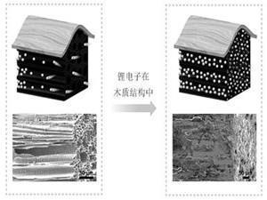 美国拟研制木制锂电池增强安全和使用性能