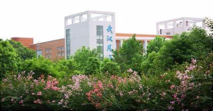 武汉凡谷近3年业绩持续下滑 真能靠5G逆袭?