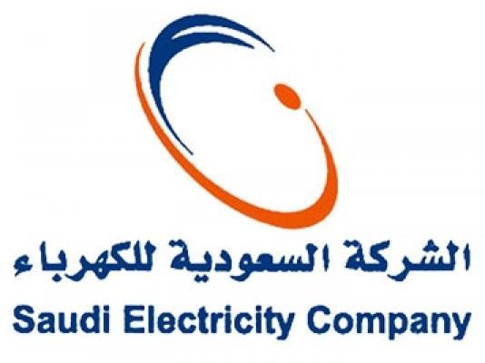 沙特获17.5亿美元国际贷款促进电力多元化