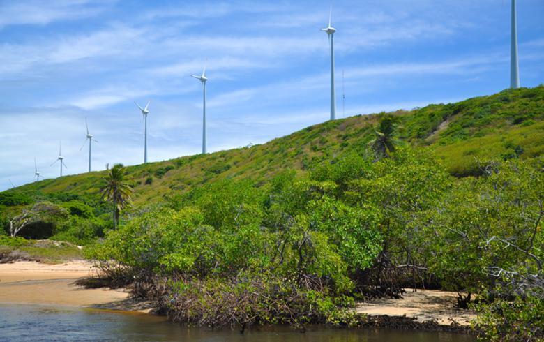 巴西Aneel拟禁止不良记录企业参与12月20日能源拍卖