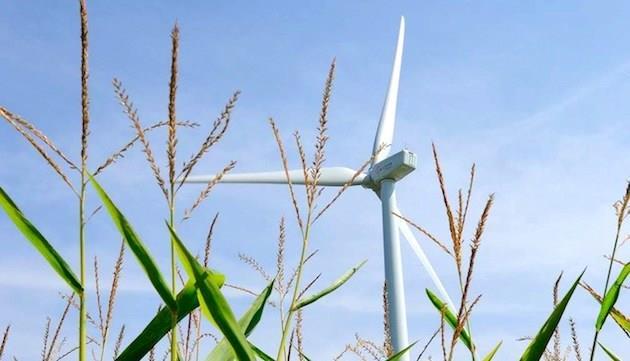 印度风电招标计划实施10个月 税率下降30%