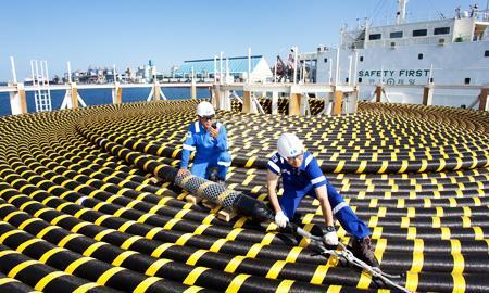 积极调整公司结构 LS电缆收购佳稳电缆公司