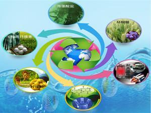 我国生物质发电稳步增长 累计装机达1488万千瓦