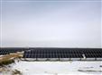 晶科电力东北市场首个光伏项目正式并网