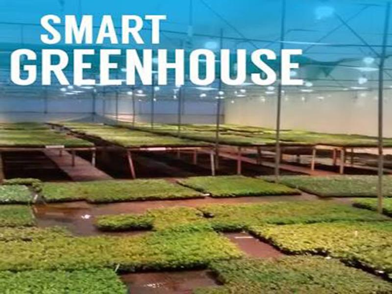 2018年全球智能温室市场价值达12.6亿美元