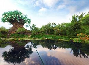 华特迪士尼计划推出50MW太阳能项目