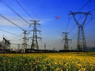 国网汉中供电公司:电力服务助群众走上致富路