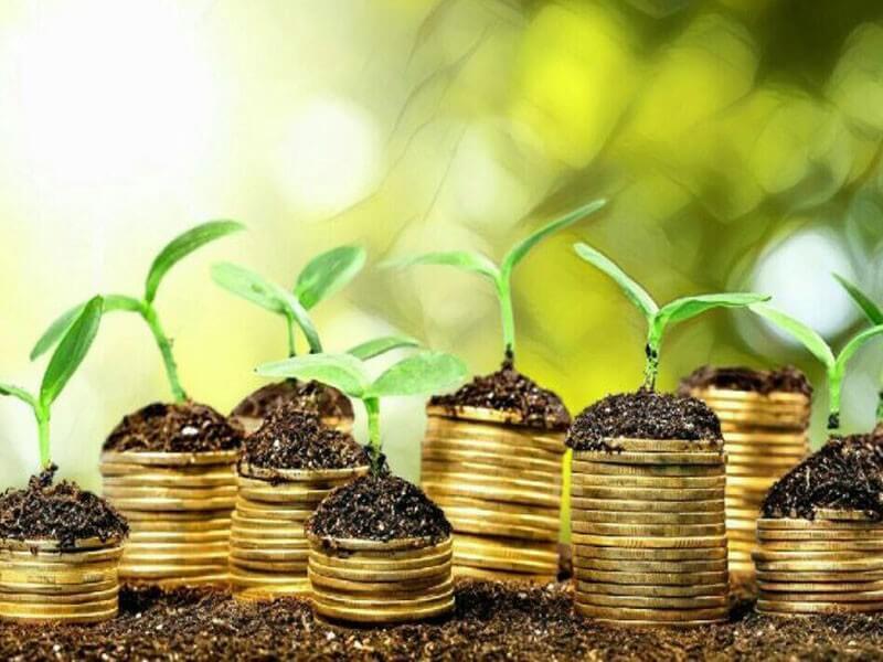 美国银行发行22.5亿美元绿色债券支持可再生能源