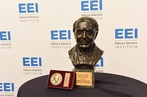 国家电网公司智慧车联网荣获国际爱迪生大奖