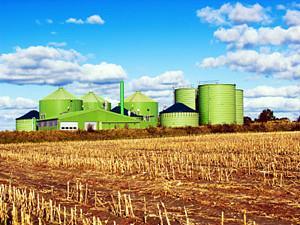 任丘热电燃煤耦合生物质发电技改试点项目获批复