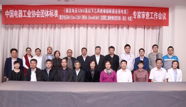 远东电缆主编两项行业团体标准通过专家组审查