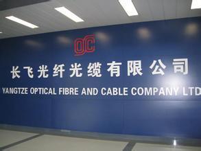长飞光纤光缆发布第三季度报告 总资产高达130亿