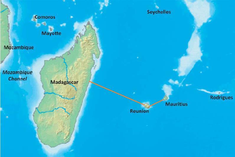 METISS海底光缆启动南非登陆站环评程序