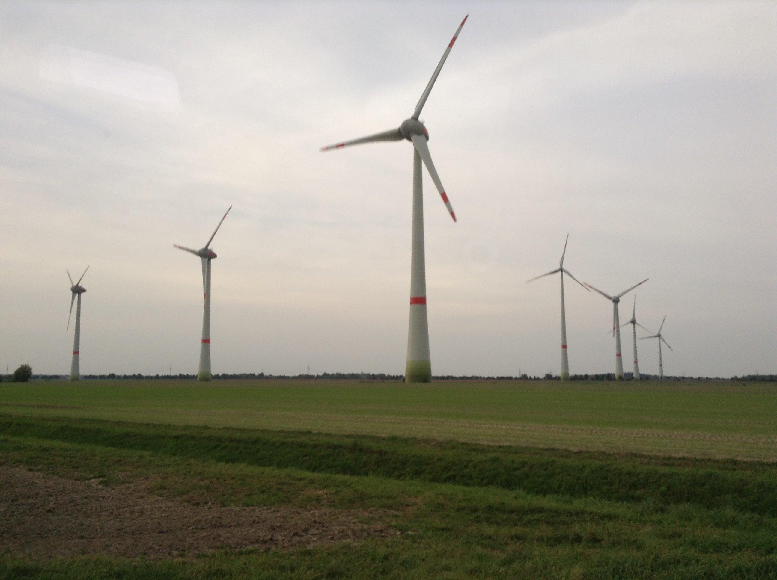 德国陆上风电招标持续低迷 认购率仅三成