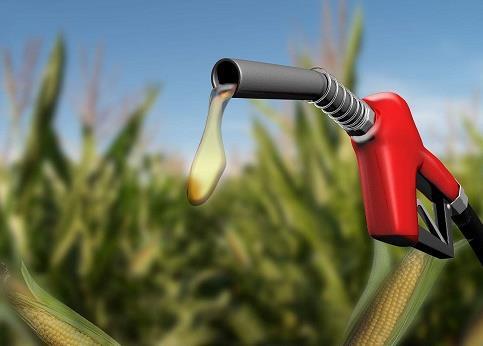 乙醇汽油市场缺口达千万吨 全面推广却有难度
