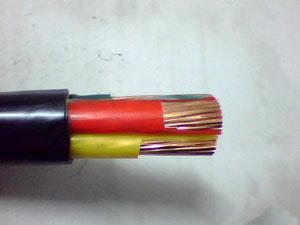 产品检测不合格  锐洋集团东北电缆被取消中标资格2个月