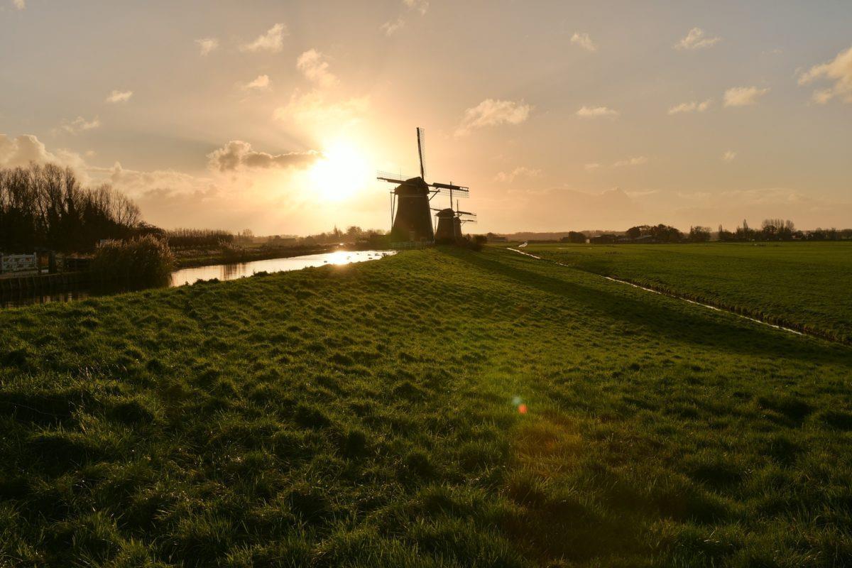 滕特预计到2030年荷兰有望新增34GW太阳能