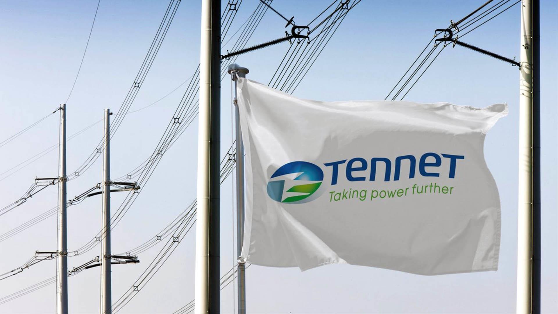 缓解财政压力 荷兰拟出售电网运营商滕特股份