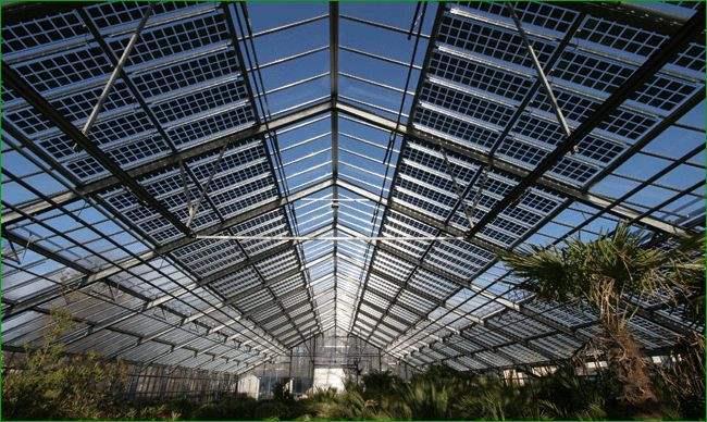 广东镇江镇将建100MW农光互补光伏发电基地