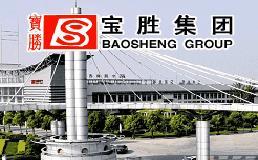 宝胜股份:中标新加坡电力局招标项目6.35亿元