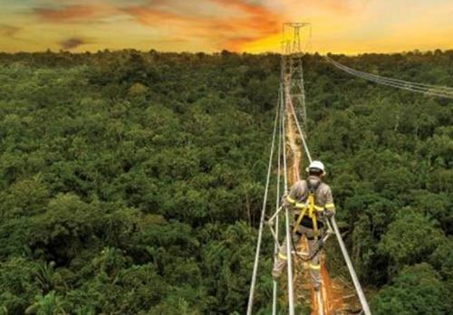 国家电网在巴西发布2020社会责任国别报告