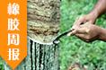 电缆原材料(橡胶)周报(9.11-9.15)